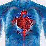лечение сердца народными средствами