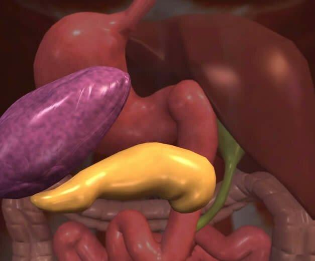 Как пить фитомуцил для похудения