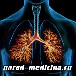 Лечение острых и хронических бронхитов
