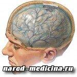 Ушиб мягких тканей головы